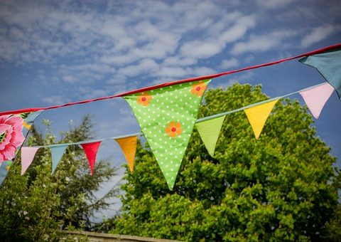 bunting_outside