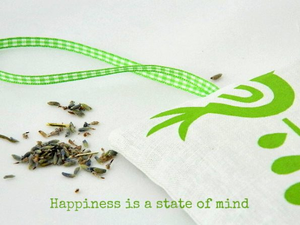 quote_happiness_is_a_state_of_mind